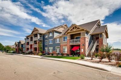 Boulder County Condo/Townhouse Active: 804 Summer Hawk Drive #FF204
