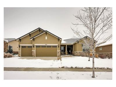 Broomfield Single Family Home Under Contract: 4587 Hope Circle