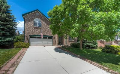 Littleton Single Family Home Active: 66 Dawn Heath Circle