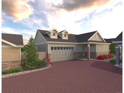 Denver CO Single Family Home Active: $391,500