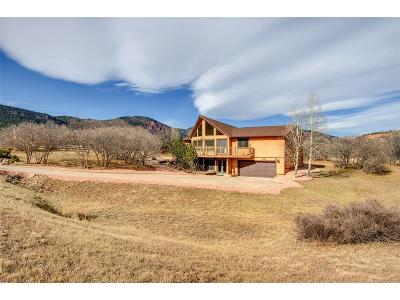 Monument Single Family Home Active: 3780 Range View Road