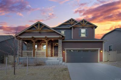 Castle Rock Single Family Home Active: 4167 Burnham Place