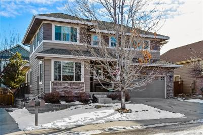 Castle Rock Single Family Home Active: 4318 Millwagon Trail