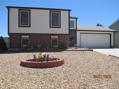 Bennett Single Family Home Under Contract: 980 Centennial Drive