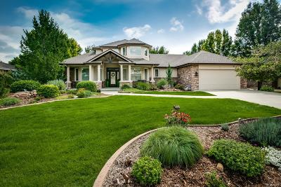 Longmont Single Family Home Active: 2070 Amethyst Drive