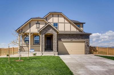 Timnath Single Family Home Active: 5117 Odessa Lake Street