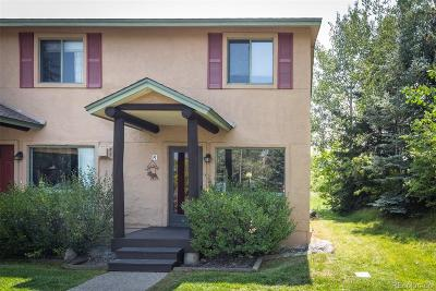 Steamboat Springs Condo/Townhouse Active: 3184 Ingles Lane #F-1