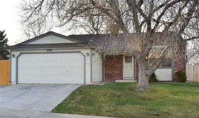 Arvada Single Family Home Active: 7597 Harlan Street