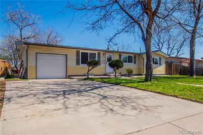 Denver Single Family Home Active: 7850 Valley View Drive