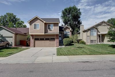 Arvada Single Family Home Active: 6321 Osceola Way