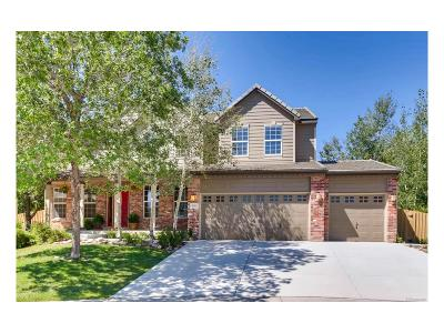 Superior Single Family Home Under Contract: 346 Onyx Way