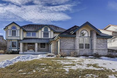 Highlands Ranch Single Family Home Active: 2428 Wynterebrook Drive