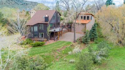 Single Family Home Active: 140 Red Rocks Vista Drive