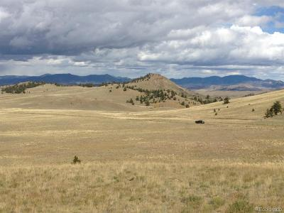 Park County Residential Lots & Land Active
