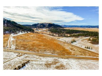 Douglas County Residential Lots & Land Active: Lorraine Road