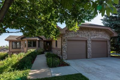 Castle Pines Single Family Home Active: 35 Tilly Lane