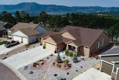 Monument Single Family Home Active: 19838 Talking Rock Heights