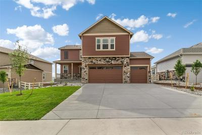 Castle Rock Single Family Home Under Contract: 5918 Point Rider Circle
