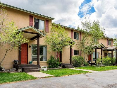 Steamboat Springs Condo/Townhouse Active: 3184 Ingles Lane #F-4