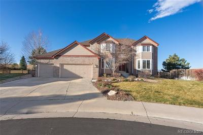 Littleton Single Family Home Active: 6024 Puma Chase