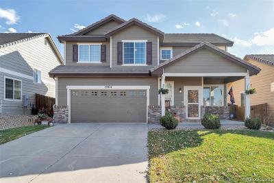Parker Single Family Home Active: 15914 Abbeylara Lane