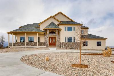 Castle Rock Single Family Home Active: 2778 Castle Butte Drive