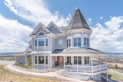 Castle Rock Single Family Home Active: 1391 Twin Oaks Lane