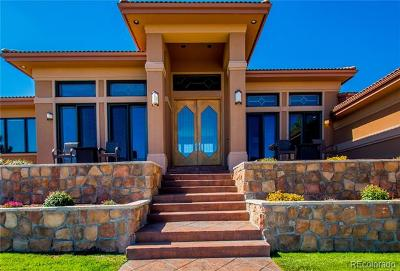 Castle Rock Single Family Home Active: 876 Diamond Ridge Circle