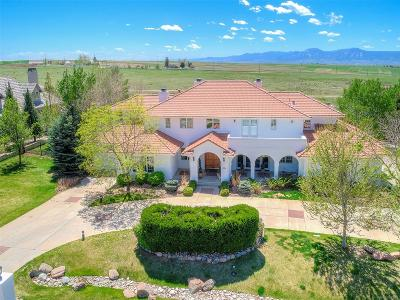 Niwot Single Family Home Active: 6331 Snowberry Lane