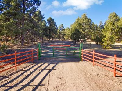 Elbert County Residential Lots & Land Active: 19445 North Elbert Road