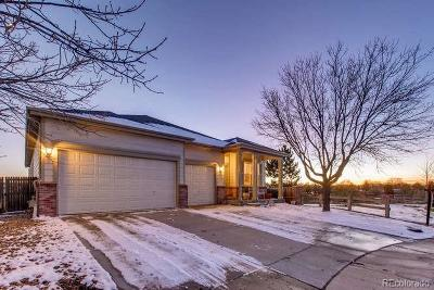 Aurora Single Family Home Active: 4885 South Himalaya Court