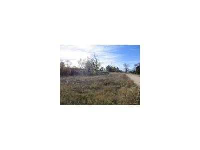 Elbert CO Residential Lots & Land Under Contract: $79,000