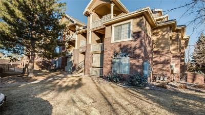 Littleton Condo/Townhouse Active: 1691 West Canal Circle #1134
