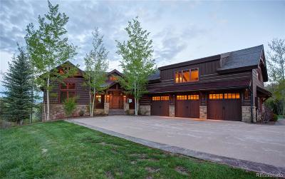 Steamboat Springs Single Family Home Active: 32545 McKinnis Creek Trail