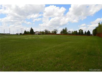 Castle Rock CO Residential Lots & Land Active: $699,000