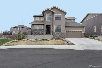 Westminster Single Family Home Active: 13615 Osage Court