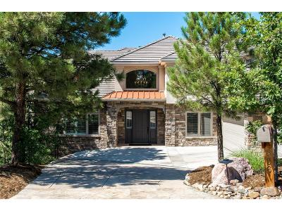 Castle Rock Single Family Home Active: 856 Swandyke Drive