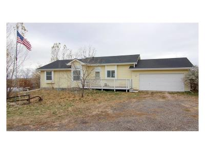 Elbert County Single Family Home Active: 44374 Shenandoah Court