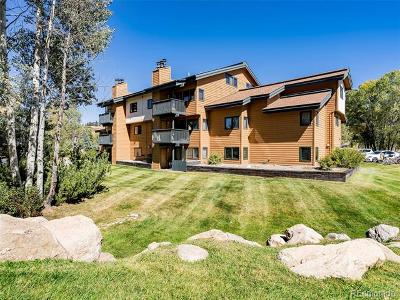 Steamboat Springs Condo/Townhouse Active: 520 Ore House Plaza #B-101