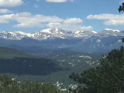 Evergreen Residential Lots & Land Active: Fern Gulch Road