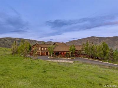 Steamboat Springs CO Single Family Home Active: $5,200,000