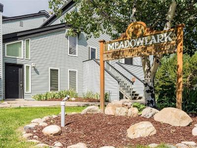 Condo/Townhouse Active: 3020 Village Drive #312