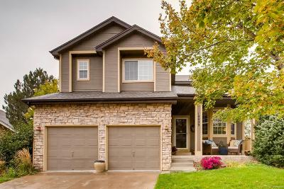 Highlands Ranch Single Family Home Under Contract: 10029 Macalister Trail
