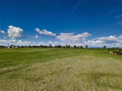 Castle Pines Village, Castle Pines Villages Residential Lots & Land Active: 6442 Holy Cross Court