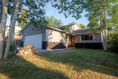 Hayden Single Family Home Under Contract: 406 High Meadow Court