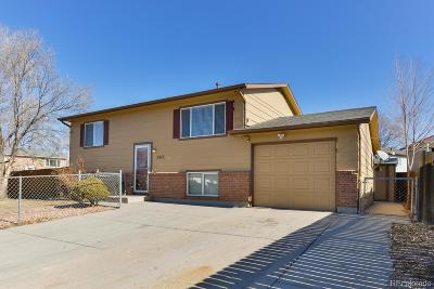 Colorado Springs Single Family Home Active: 3612 Tackwood Drive