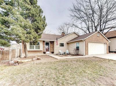 Aurora Single Family Home Active: 4154 South Dunkirk Way