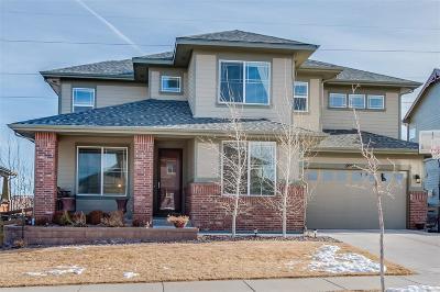 Parker Single Family Home Active: 20555 East Shady Ridge Road