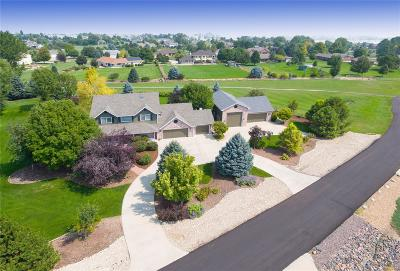 Longmont Single Family Home Active: 2031 Meadow Vale Road