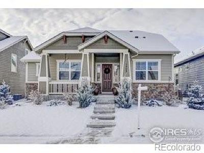 Berthoud Single Family Home Active: 1503 Hollyberry Street